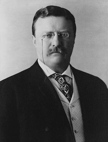 364px president theodore roosevelt  1904