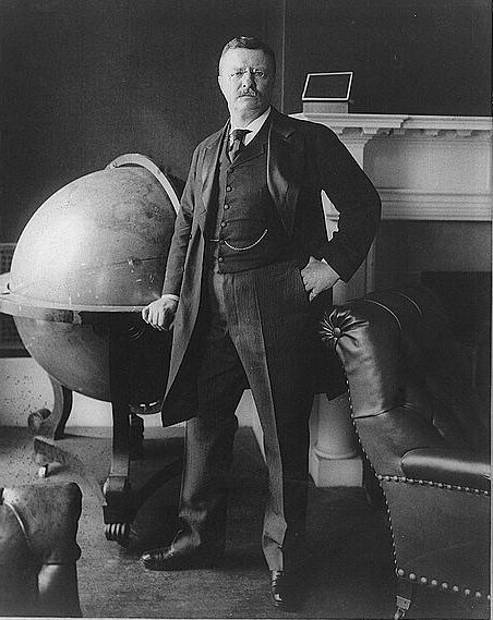 Teddy roosevelt portrait